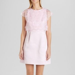 Ted Baker Dress Size 2 (US Size 4)
